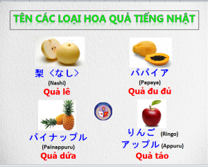 ten-hoa-qua-bang-tieng-nhat