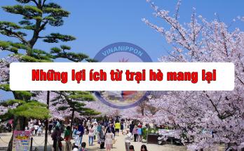 nhung-loi-ich-tu-trai-he-mang-lai-03