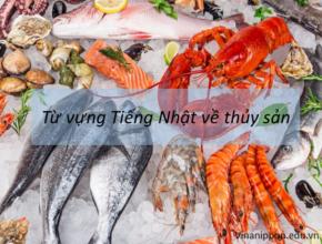 Từ vựng Tiếng Nhật về thủy sản